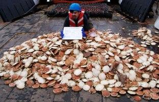 Цунами нанесли серьезный урон рыбной промышленности Японии