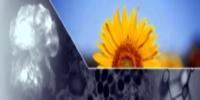 Инициативу отказа Украины от хранения урана можно только приветствовать