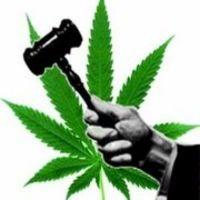В США легализуют марихуану