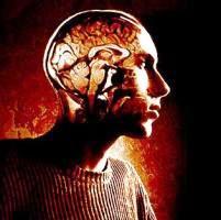 Ежедневное употребление чашки чая или кофе защитит от рака мозга