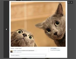 ВКонтакте появились фотографии в новостях и новая стена