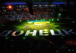 В Украине выберут «зверушку» для Евро-2012