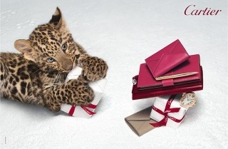 Картье представил рождественскую коллекцию «Зимняя сказка»