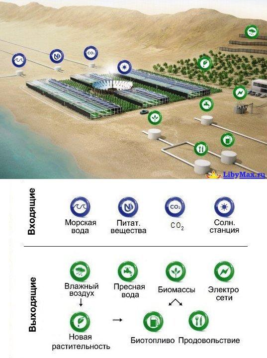 В Сахаре построят оазис ASEZA