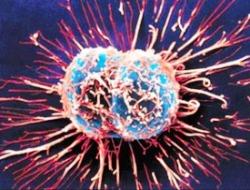 Всемирный день борьбы против рака - 4 февраля