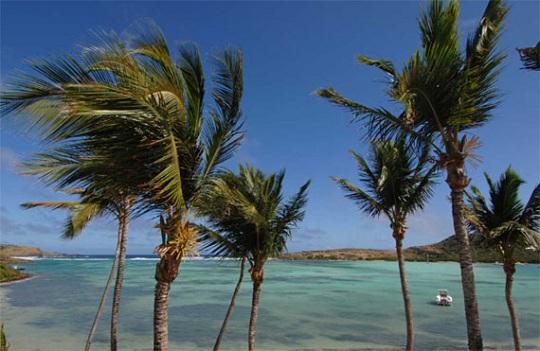 Лучший подарок к 8 марта - уикенд на острове Сент-Бартелеми