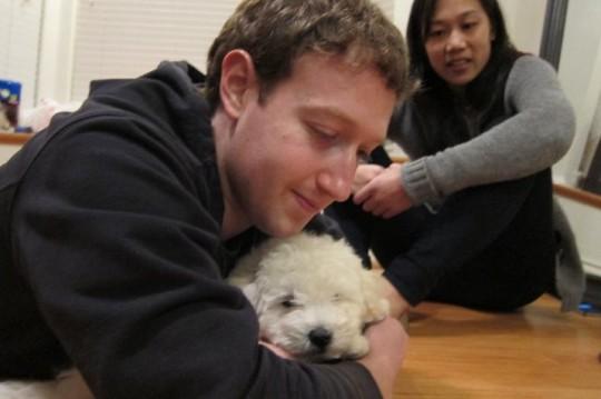 Марк Цукерберг и Присцилла Чен завели щенка Пули