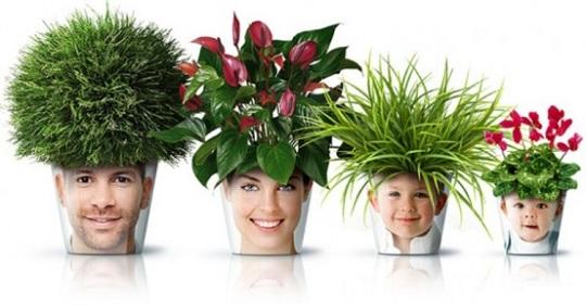Супер цветочные горшочки для дома и настроения