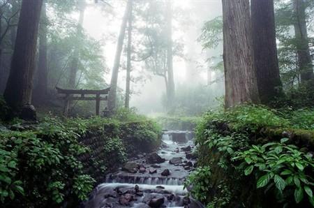 Вертикальная ванна в японском стиле от Stone Forest