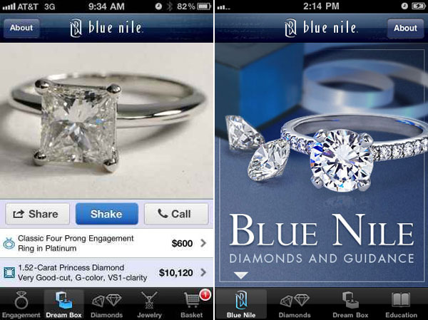 how blue nile inc is change the jewelry industry Wikiwealth's comprehensive five (5) forces analysis of blue-nile-inc includes bargaining power of supplies and customers threat of substitutes, competitors, and rivals.