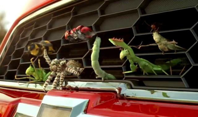 Chevy Sonic приучил насекомых к экстриму