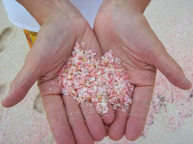 Самые необычные пляжи Земли