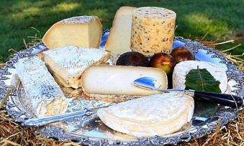 Пуле - самый дорогой сыр в мире