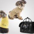 Ralph Lauren выпустил коллекцию одежды для собак