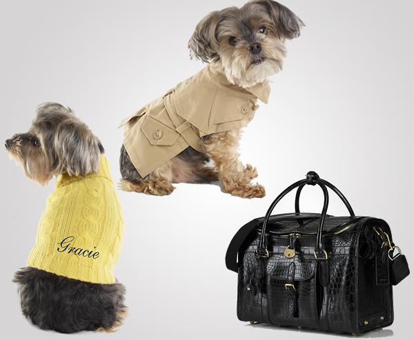Ralph Lauren dog