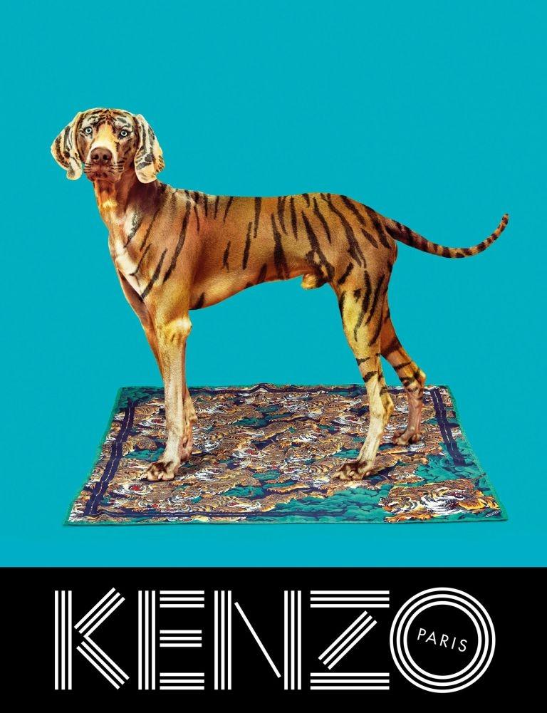 Kenzo add campaign 2