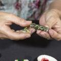 Montegrappa представила лимитированную модель ручки Snake 2013 Hand Painted