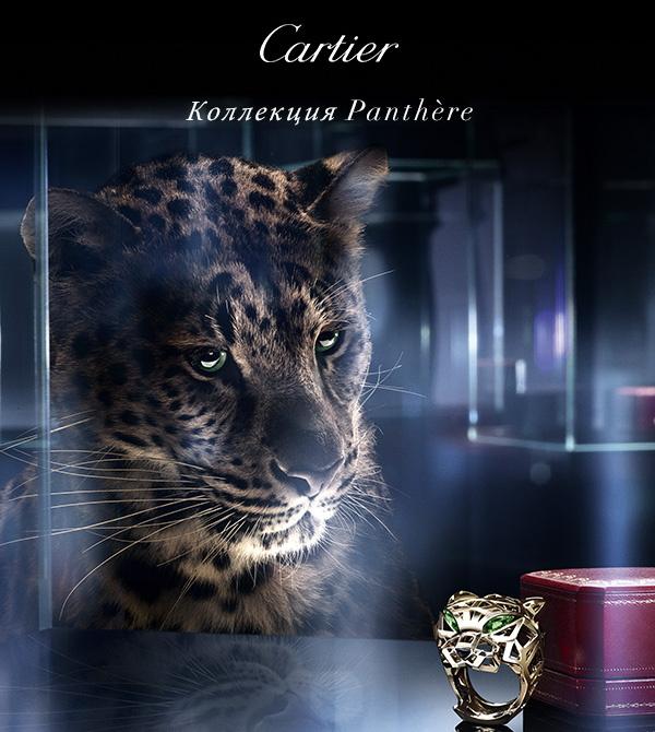 Царствование пантеры Cartier продолжается