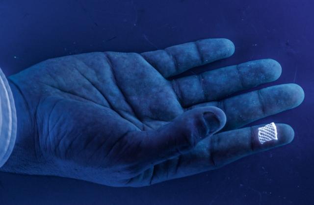 Эту светящуюся в ультрафиолете трехмерную «подложку» создали ученые из Гарвардского университета, применив биологические «чернила» для печати ткани, пронизанной кровеносными сосудами. Это открывает новые горизонты для тестирования лекарств, а со временем и трансплантации человеческих органов. Группа Льюиса, Гарвардский Университет.