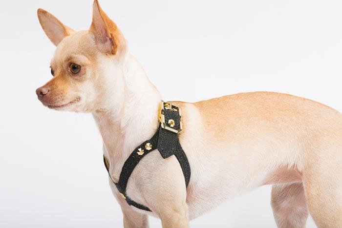 Brikk Lux Dog harness