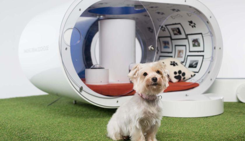Samsung dog kennel