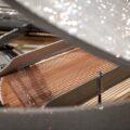 Самый роскошный рояль Steinway & Sons