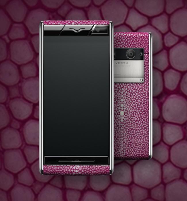 Aster Stingray Pink