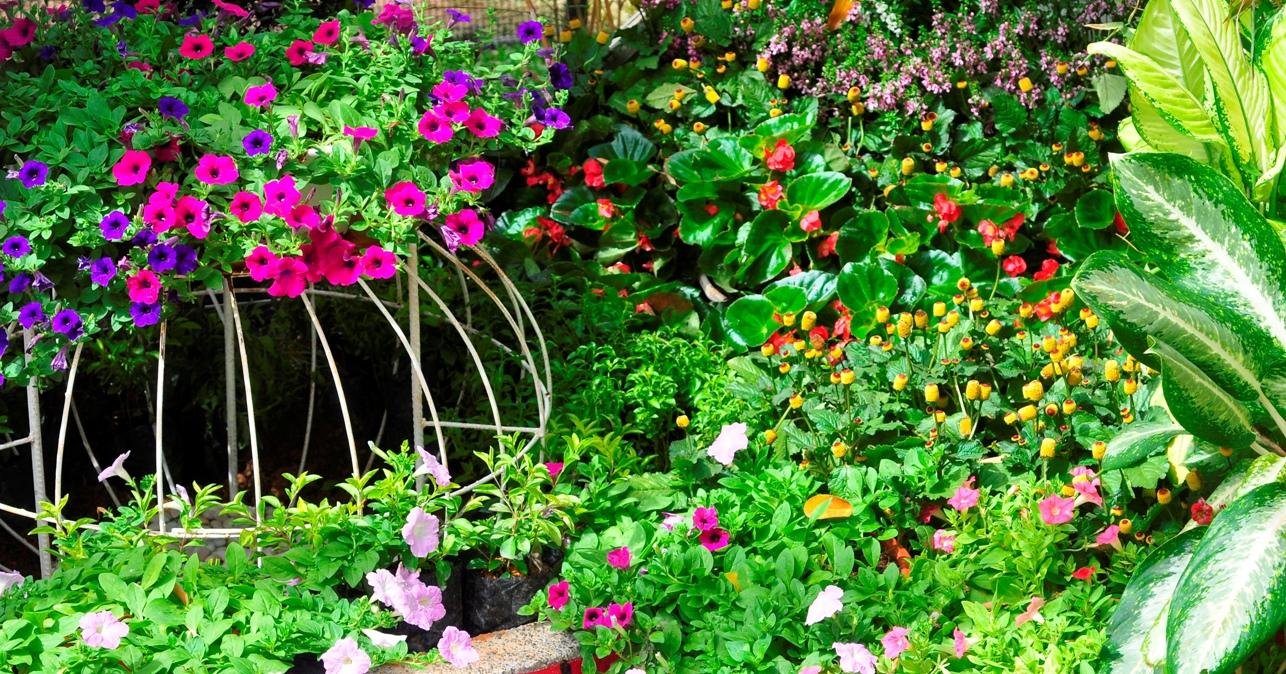 Royal FLORIA Putrajaya Flower and Garden Festival 2015 2