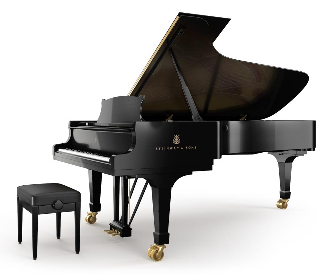 Steinway Sons Fibonacci Piano Model D