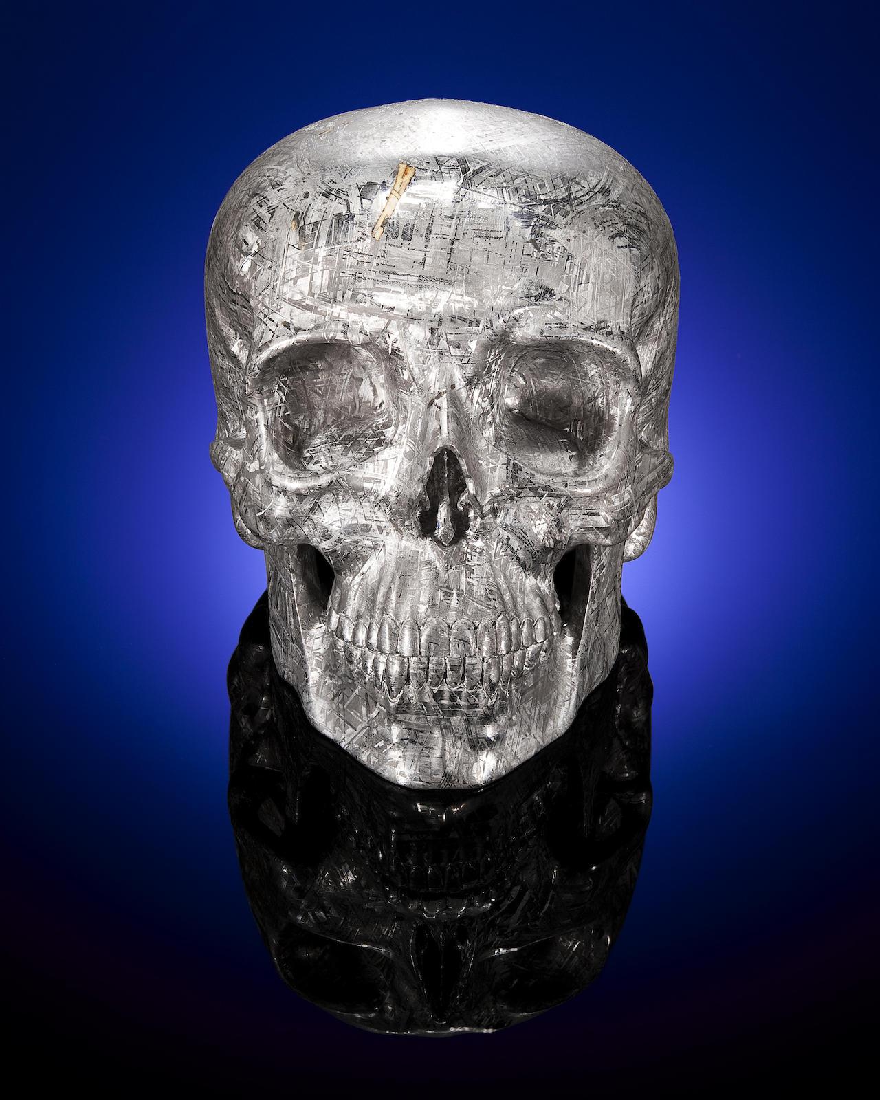 Lee Downey skull Yorick Gibeon meteorite 2
