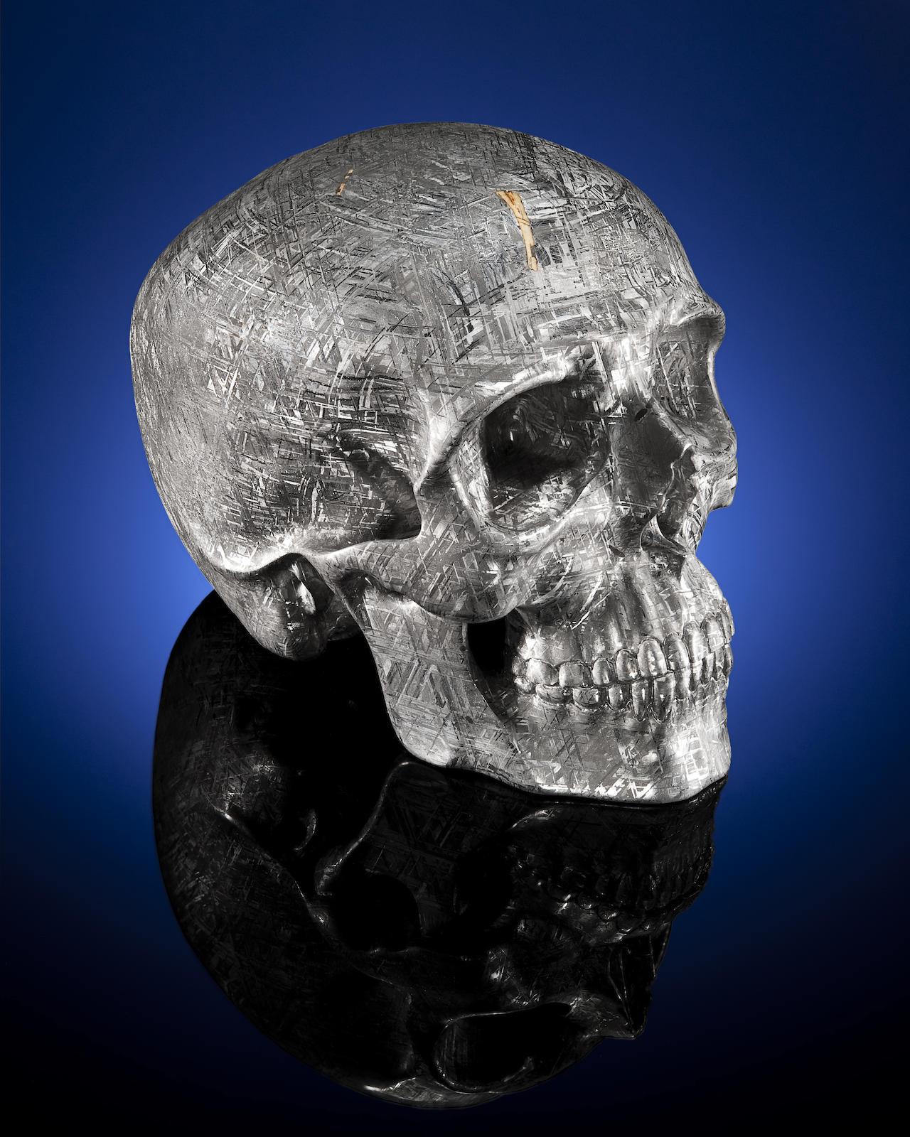 Lee Downey skull Yorick Gibeon meteorite